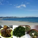 三浦海岸🌊ついにワカメの季節が来ました❤おすすめ❤観光❤手ぶらでBBQ❤ウッドデッキ❤ペットOK
