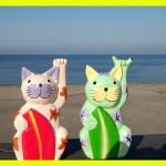 三浦海岸☀本日大快晴❗❗(≧∀≦)☀🌈パドルサーフィン☀SAP